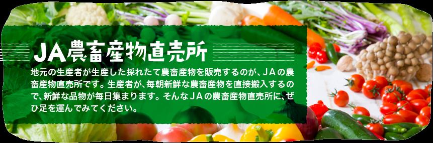 JA農産物直売所&#000A;地元の生産者が生産した採れたて農畜産物を販売するのが、JAの農畜産物直売所です。&#000A;生産者が、毎朝新鮮な農畜産物を直接搬入するので、新鮮な品物が毎日集まります。&#000A;そんなJAの農畜産物直売所に、ぜひ足を運んでみてください。