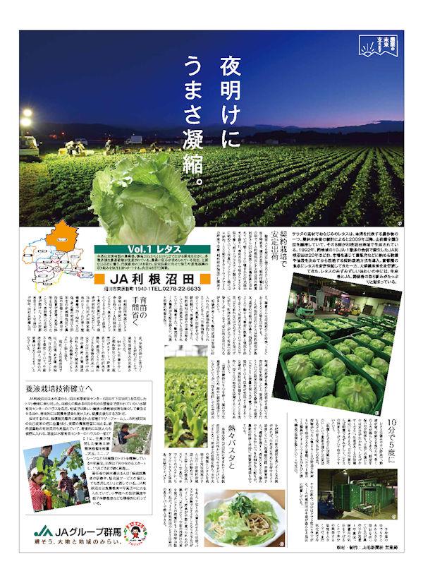 農業の未来支えます Vol.1 レタス JA利根沼田