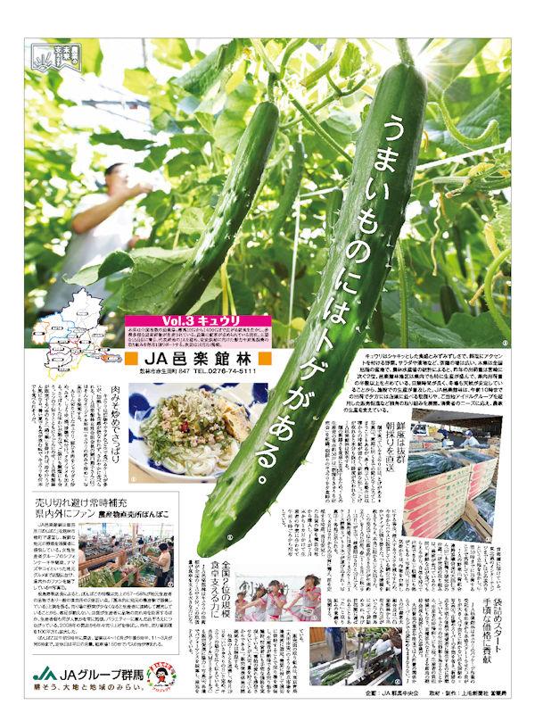 農業の未来支えます Vol.3 キュウリ JA邑楽館林