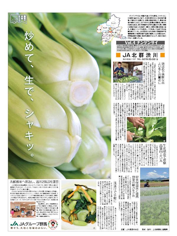 農業の未来支えます Vol.4 チンゲンサイ JA北群渋川